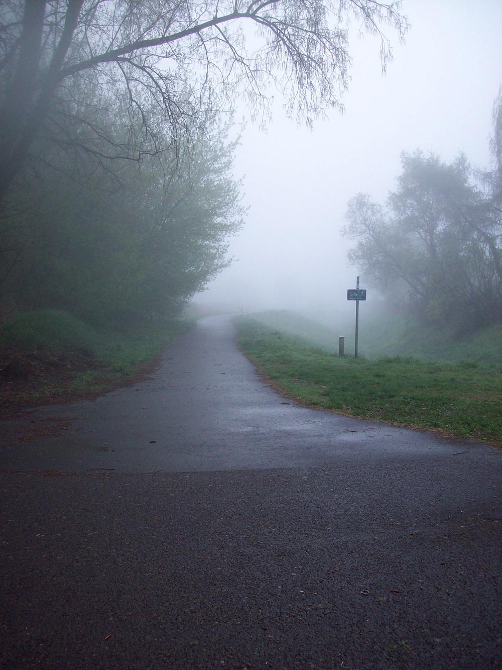 Nebelweg 50 x 75